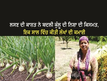 Kullu Farmer Nisha : ਲਸਣ ਦੀ ਕਾਸ਼ਤ ਨੇ ਬਦਲੀ ਕੁੱਲੂ ਦੀ ਨਿਸ਼ਾ ਦੀ ਕਿਸਮਤ, ਇਕ ਸਾਲ ਵਿੱਚ ਕੀਤੀ ਲੱਖਾਂ ਦੀ ਕਮਾਈ
